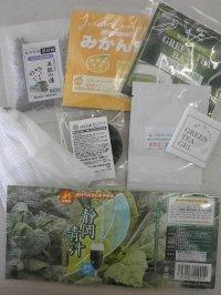 【初回特典】エコライフおすすめ商品セット