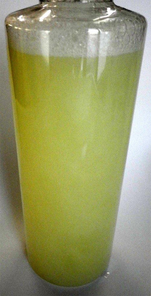 他の写真1: 石鹸原料のボディソープFLU(クラウンメロン)500ml お得タイプ