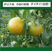 静岡県産 蒼橙芳香蒸留水(3,500mL)